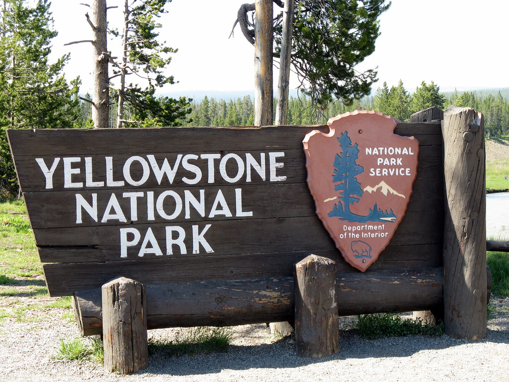 Yellowstone National Park Let Nature Take Its Cpurse Rules