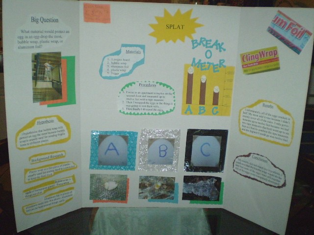 What are some science project ideas for 6th graders? | Reference.com