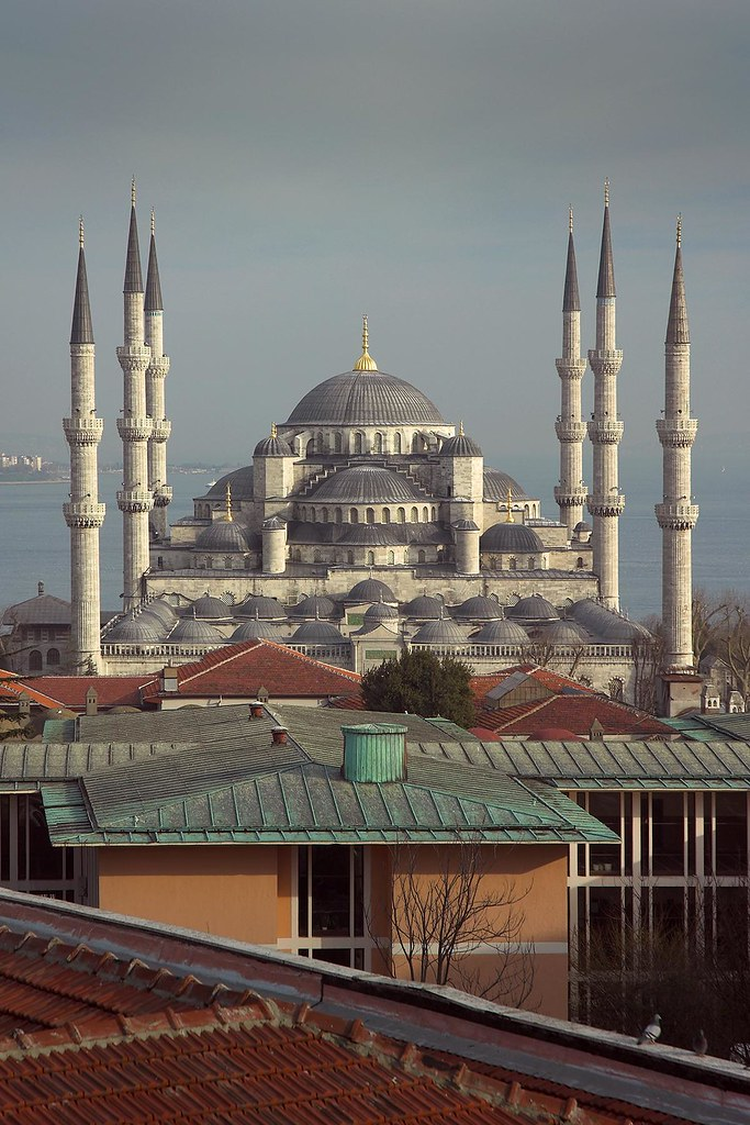 Turkey Istanbul Blue Mosque Portrait View Of The