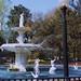 The Forsyth Park Fountain -  Savannah