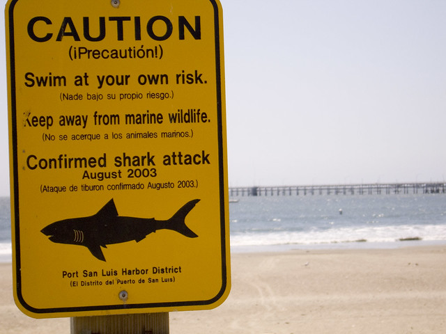 Image result for Shark warning signs