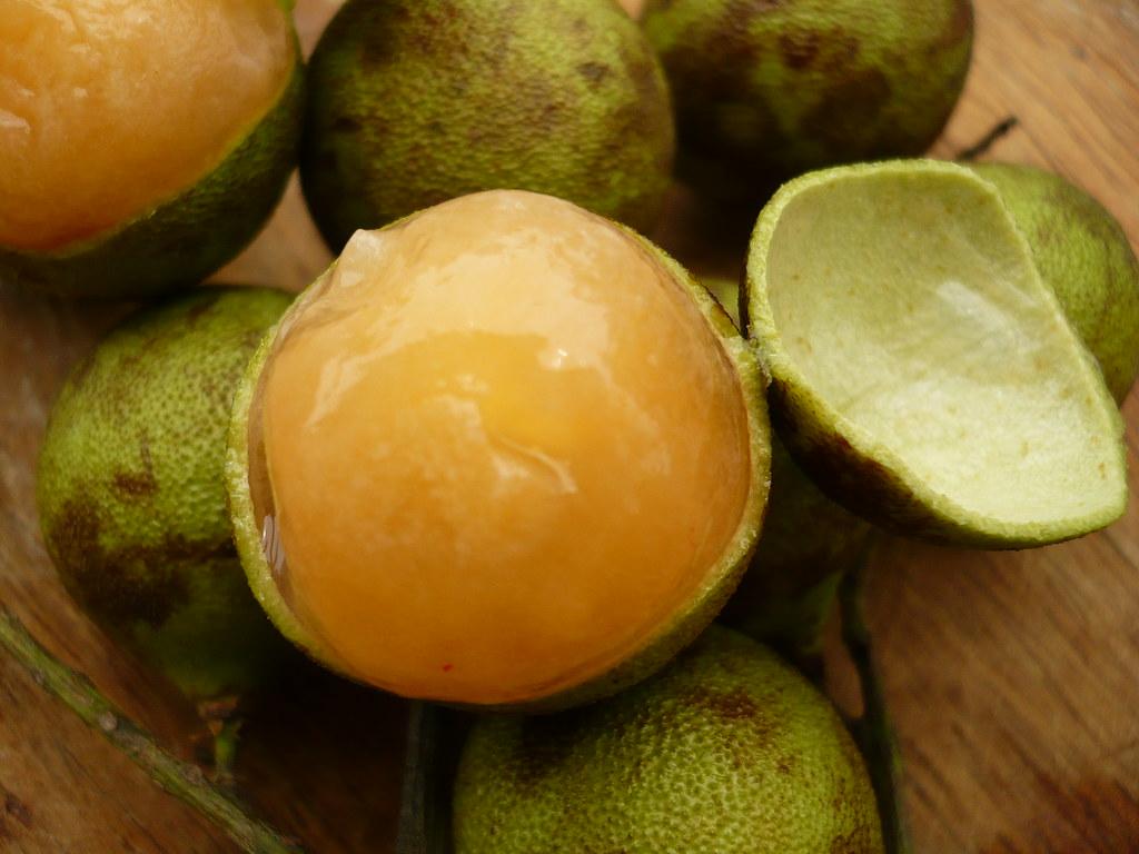 Melicoccus bijugatus,limoncillo, mamon | Mabelín Santos ...