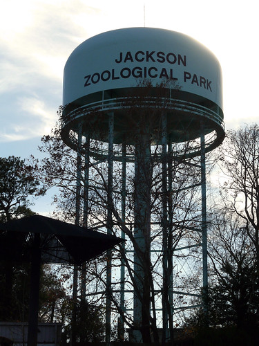 Jackson Zoo | by Kristin Brenemen