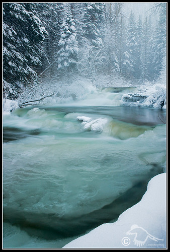 Wintergreen III (cameroncreek-DSC_3095.jpg) | by Larsthrows