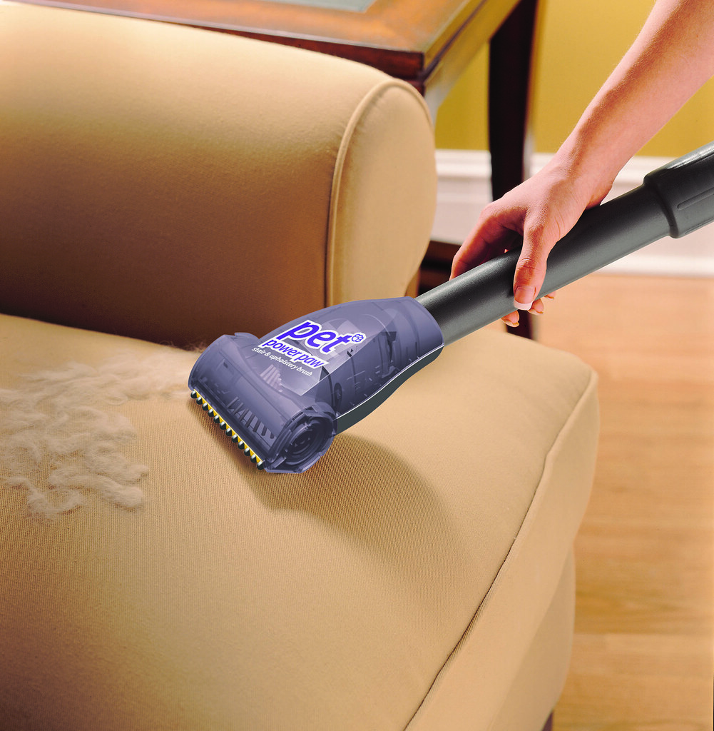 How to remove pet urine odor from upholstery