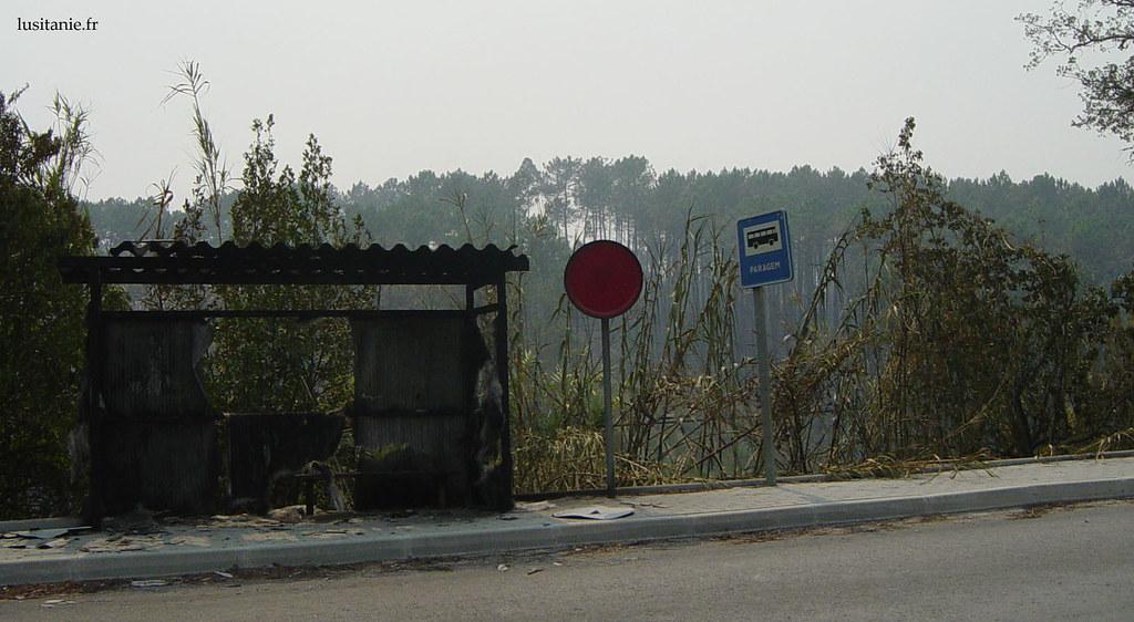Arrêt de bus incendié