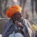 Pushkar Camel Trader
