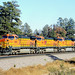 BNSF General Electric 4400 horsepower C44-9 locomotives 4390, 4640 and 4611 pull a westbound freight train, east of Flagstaff, Arizona, September, 2003