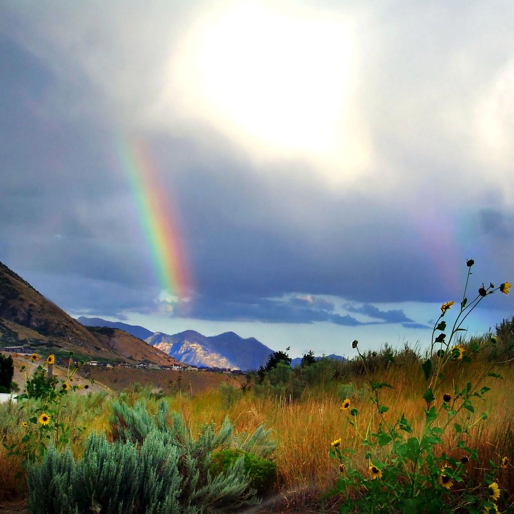 the rainbow by william wordsworth pdf