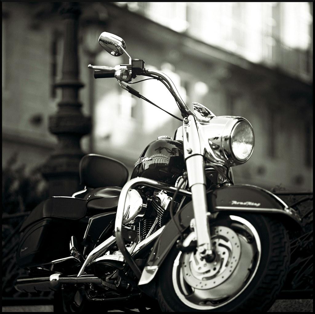 Bmw Motorcycles Dealer Houston Texas
