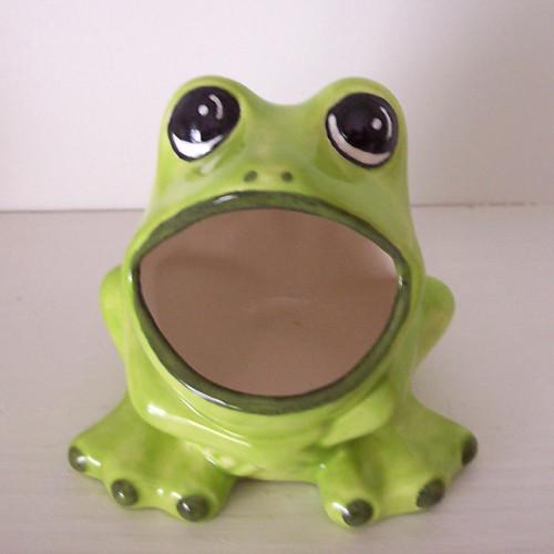 Vintage Design Frog Scrubby Holder Fruitflypie Flickr