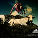 Adidas: Nothing is impossible.