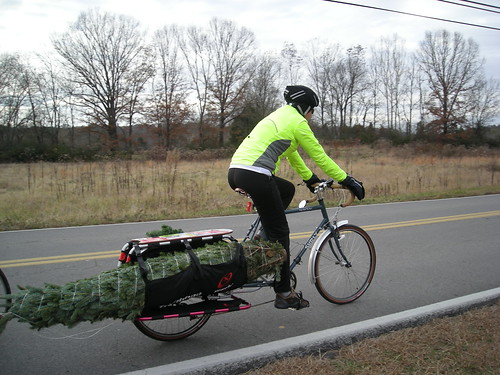 xmas tree by Xtracycle | by shebicycles