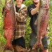 Two Wasilla brothers that both bagged kings