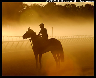 Horse and Rider at Dawn | by Rock and Racehorses