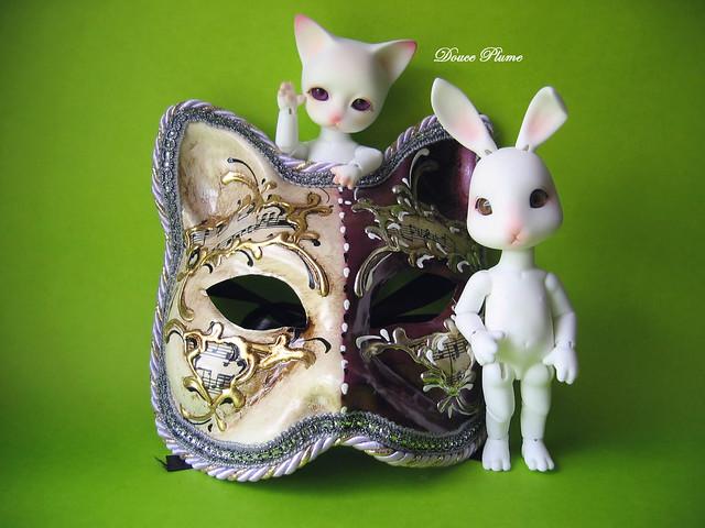 Mes Pipos (chats et lapins) 2852991591_b735ec1a04_z