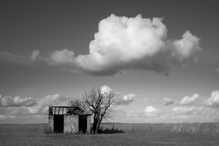 Home | by chrisfriel