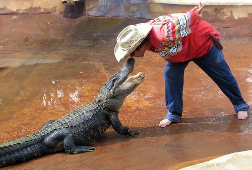 kissing the gator | by CGAphoto