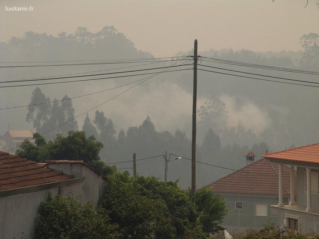 La majorité des morts lors dun incendie sont dûs aux intoxications de fumée