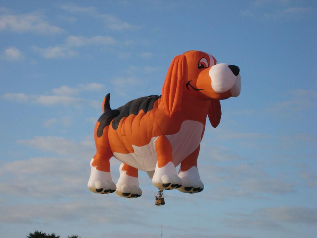 Image Result For Flying Dog