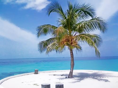 Coconut Beach Resort Nusa Lembongan Island