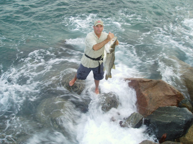 Jupiter inlet snook a big female linesider by for Jupiter inlet fishing