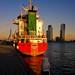 Rotterdam Impressions: Kop Van Zuid