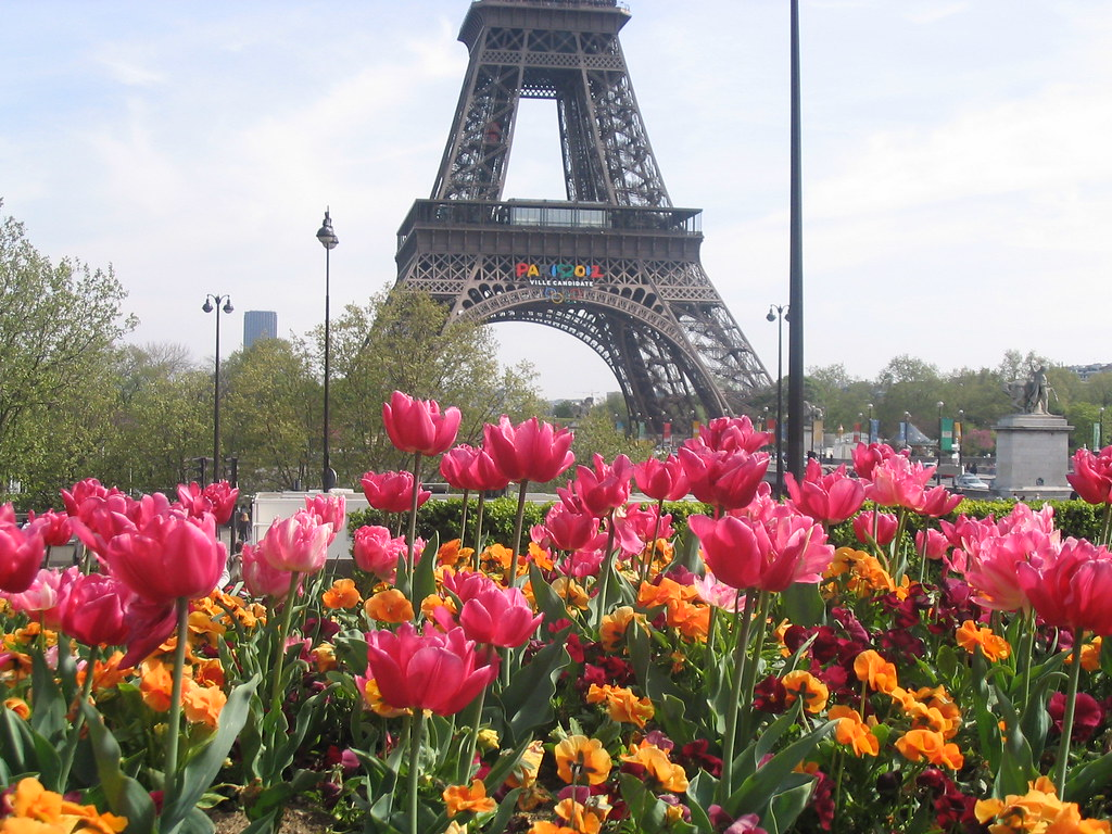 Paris Eiffel Tower Photography Flower Eiffel Tower And Flowers
