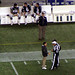 Belichick confers with a ref