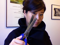 Shredding Scissors! $9 at Container Store or $18 at MoMA | by La Mariposa