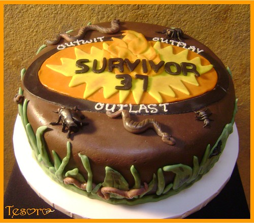 Survivor Chocolate Cake