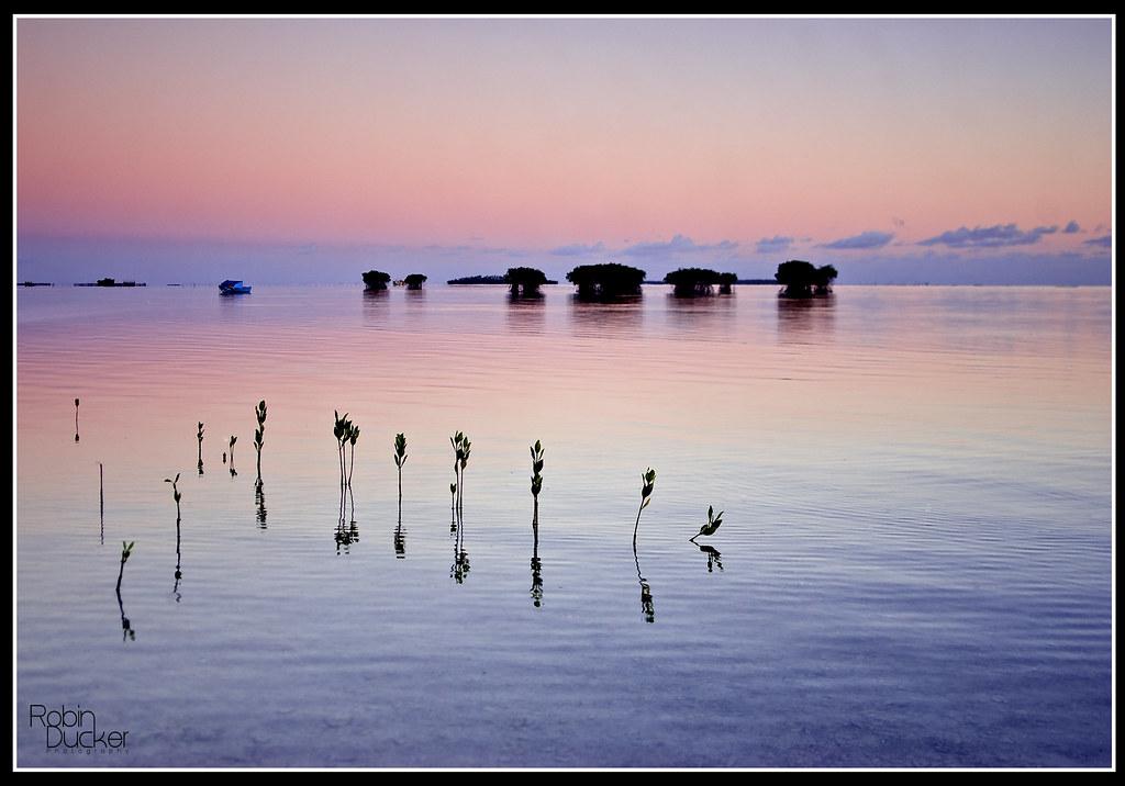 Shutter Island Scene Finale Francais