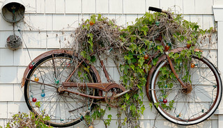 Rusting Bicycle Trellis | by J.G. in S.F.