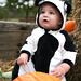 Blake In His Cow Costume