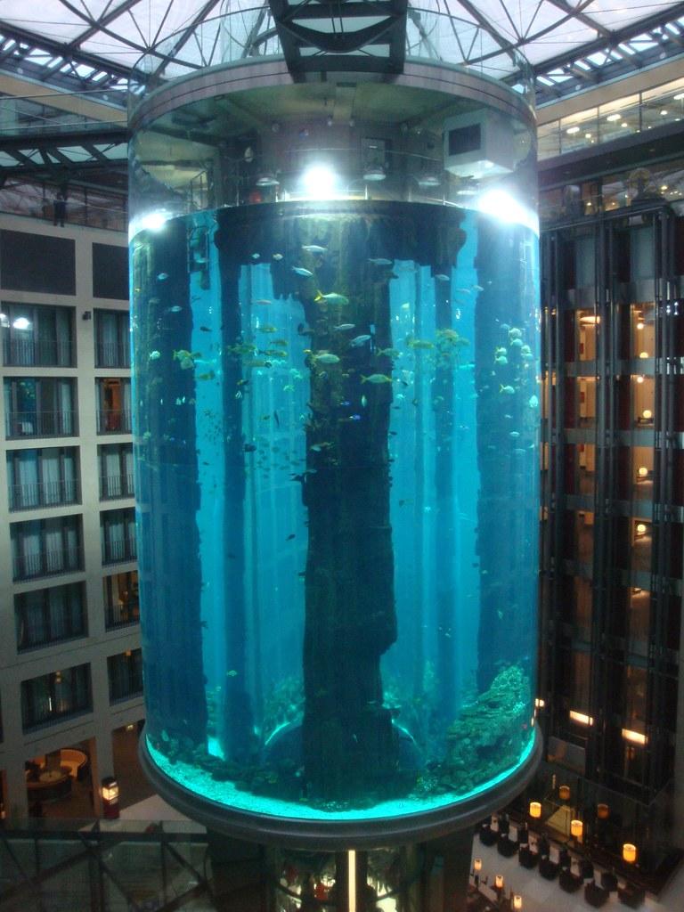 aquadom berlin weltweit gr tes zylindrisches aquarium f flickr. Black Bedroom Furniture Sets. Home Design Ideas