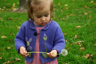 toddler with dandelion | by leann_b