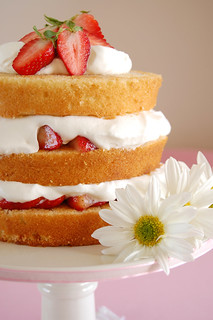 Sky high strawberry shortcake / Bolo de camadas com morangos e chantilly | by Patricia Scarpin