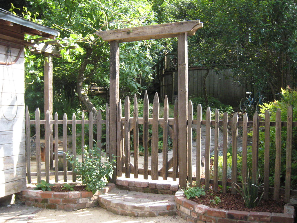 May 30 Grape Stake Picket Fence And Arbor Dawn