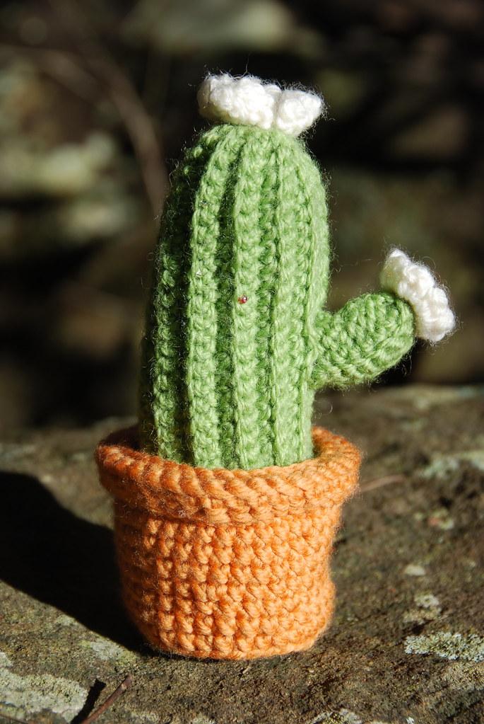 Вязание кактус крючком-мастер класс 74