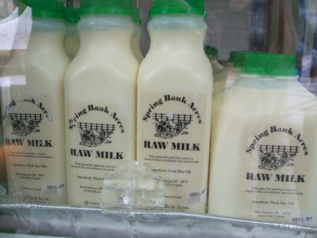 raw milk The use of raw milk as a beverage for humans is a hotly debated topic a simple internet search using the term raw milk yields conflicting claims about its benefits and dangers many people base their opinions about raw milk on myths rather than facts not knowing the risks may lead people to.