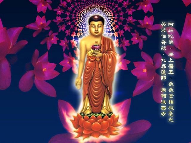 Amitabha Buddha Wallpaper Amitabha Buddha Desktop