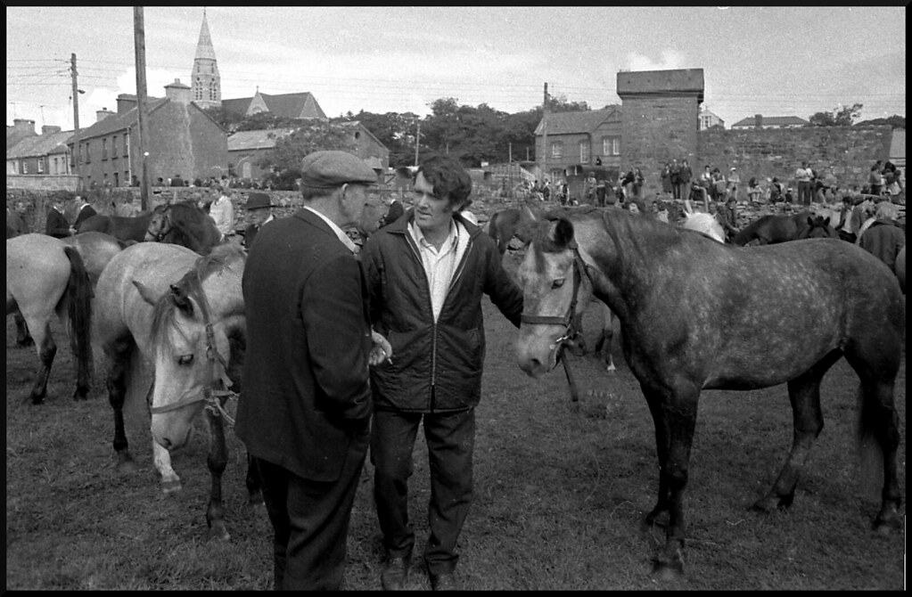 Horse Trading | Well not horses exactly but Connemara ...