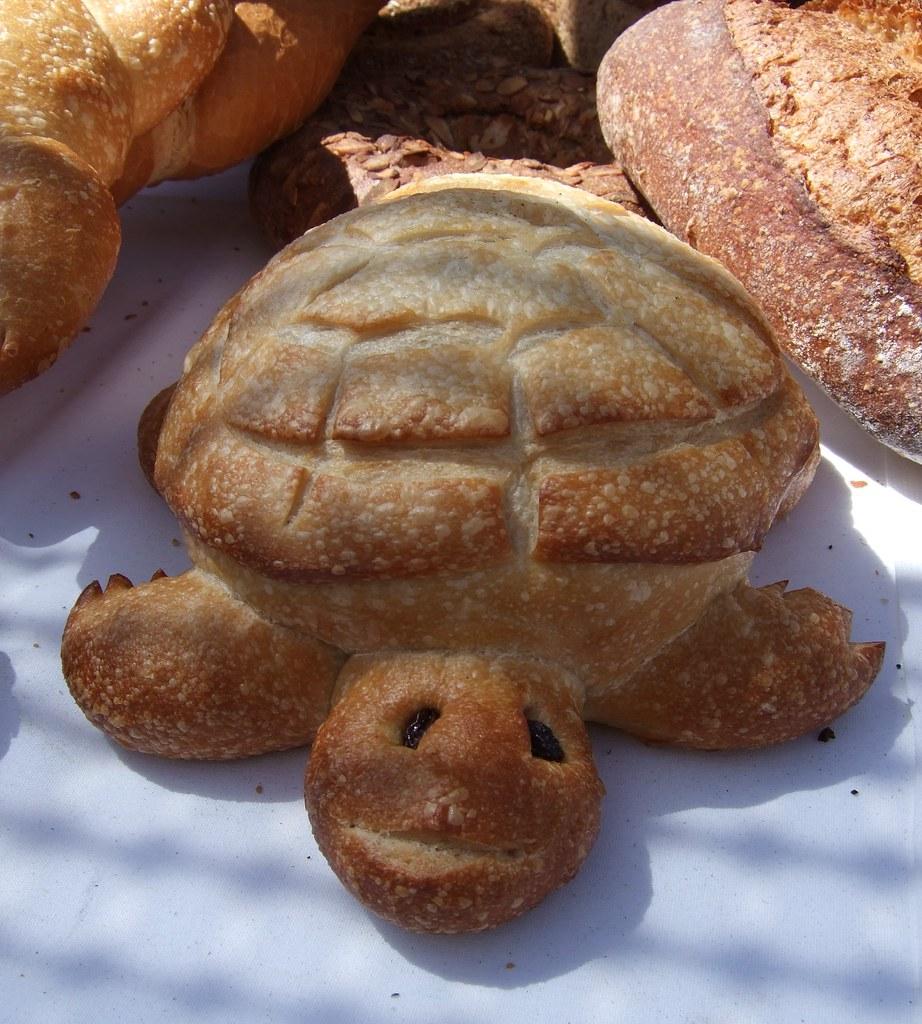 Turtle Bread!   lesleyk   Flickr