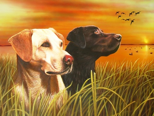 Painting Of A Lab Dogs In Sunset Marsh Clarence Stewart