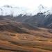 Fall colors in Denali National Park
