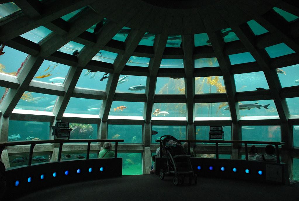 underwater dome 1