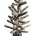 Typewriter Christmas Tree