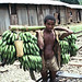 Man carries bananas