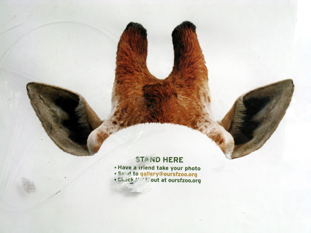 Giraffe Ears | Clever ad on a bus stop. | Scott Vandehey | Flickr