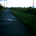 Morning, Interurban Trail, Auburn, WA